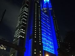 暗くなってから行きたい所があったので再び新宿に戻ります。 目的地は東京都庁です。