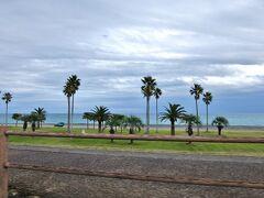 勝浦まできたので もう少し先まで~ 少し行くと ハワイのようなきれいな公園 七里御浜  約22Km続く日本で一番長い砂礫海岸です