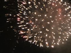 東京ディズニーリゾートの花火