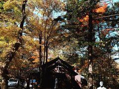 秋の土曜日。 軽井沢ショー記念礼拝堂でも、結婚式の真っ最中。  ここって結婚式できるんだね。