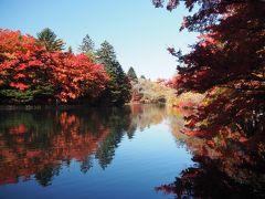 紅葉の有名池の雲場池に到着。  スンゲーーー綺麗な紅葉!  スンゲーーー人。。。。