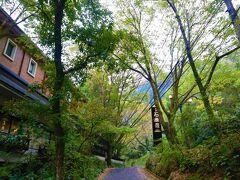 川沿いに湯治の宿が並び少し奥に入った手前に妙見温泉石蔵石原荘はあります。 中々いい感じのアプローチ  https://www.m-ishiharaso.com/