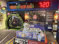 今回の旅には同行者がいて、集合場所は台湾鉄道南港駅の白虎。東武鉄道と台湾鉄路管理局は2015年12月18日に友好鉄道協定を結んでいて、東武動物公園にいる白虎のぬいぐるみが駅コンコースに置かれている。