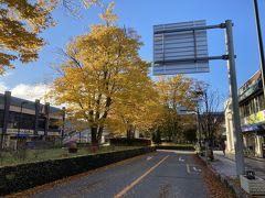 軽井沢駅前の真っ黄色。