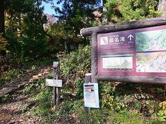 ●苗名滝  次に訪れたのが、こちらも妙高高原の定番スポット「苗名滝」です。 「関川」の上流にある滝へのアクセスルートとなる道路はきちんと整備され、駐車場も普通車で100台くらい停められるなど、ここまでのアプローチはすごく便利でした。  駐車場から少し進んだところに、滝への遊歩道の入口があり、ここから約500メートル・15分ほど歩いていくことになります。