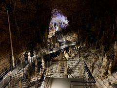玉泉洞に入ってすぐ目にするのが、30万年という期間で自然が作り続けた100万本以上の乳石群。  熱帯・亜熱帯という沖縄の気候が、乳石の成長スピードを上げているらしいですよ。