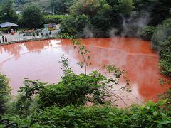 展望エリアから見下ろす血の池地獄は朱色が際立っていた