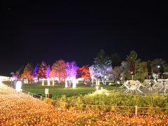 ライトアップを見に、夜の軽井沢プリンスショッピングプラザへ。