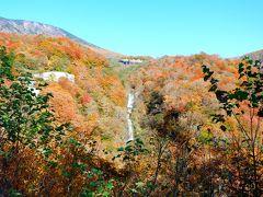 こちらが般若滝だたかと。 山の色づきが絶景でした!