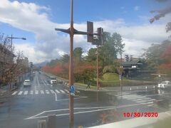 弘前市役所から「弘前公園」を見る。