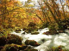 次の目的地は、いよいよ奥入瀬だ。十和田湖(標高400m)から流れ出す渓流である。下流の焼山(標高約200m)まで、15kmほどの探勝路が設けられている。この内、景色がいいのは三乱の流れから十和田湖までの10kmほどのようだ。この間を歩き通したいが、今日は十和田湖も行きたいので、タクシー利用の利点を生かして、要所要所で止めて頂き、一部を歩くことにした。天気が保てば、明日、もっと長い区間を歩こう。  まず三乱の流れだ。紅葉がいい具合だ。渓流の撮影スタイルの一つにスローシャッターがある。三脚を据えて1/2.5秒で写してみた。  次に石ケ戸から少し歩いた。