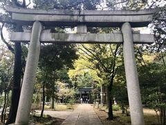 満腹のお腹を抱えながら、近くの赤坂氷川神社へ参拝してきました。 メゾン・ド・ユーロンから10分ちょっとです。