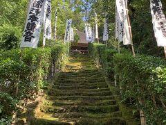 妙隆寺から徒歩15分ほどにある坂東33観音の第1番札所の杉本寺。坂東33観音巡りをここからスタートすると、御朱印に「発願」のスタンプがいただけるんです。苔の階段は想像以上に迫力があります。