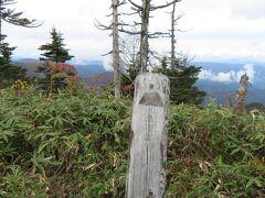 鳥甲山の山頂。笹や低木が多く、展望はそれほど良くない。