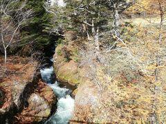 竜頭の滝に来ました。 滝の上から散策します。