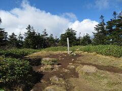 苗場山山頂。樹林に囲まれた小広い場所で、展望はなし。