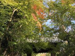 ねねの道を八坂神社へ向かうと右手に高台寺入り口。まだ行った事のない所なので拝観してみよう。