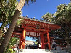 青島神社の本殿 左右の植物か南国チック  青島のエリアは「亜熱帯植物群落」として国指定の特別天然記念物  ここを入ると本殿