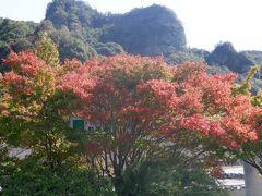 ところどころに紅葉が見えます。断崖とのコントラストが目を奪います。