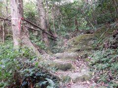 弘法大師ゆかりの地が多く存在しています。本耶馬渓にも四国歩きお遍路にあやかった競秀峰めぐりコースがあります。歩いてみました。