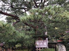 兼六園は日本三名園の一つで、国の特別名勝にも指定されています。紅葉を鑑賞するために来ました。