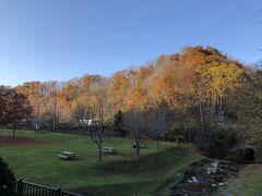 滝の上公園の紅葉はまだ残ってくれていました