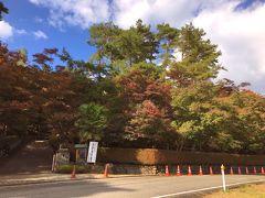 すぐ近くの、紅葉で有名な松雲山荘へ。柏崎ガス会社の創設者・飯塚謙三氏の旧居で、大正15年に伊藤武陵画伯筆の六曲屏風絵をもとに築庭されました。営業時間:9時30分~18時。駐車場料金500円