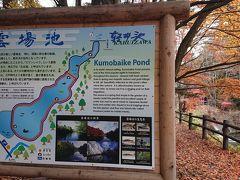 軽井沢駅からのんびりのんびり歩いて約15分で雲場池に到着。8時32分。