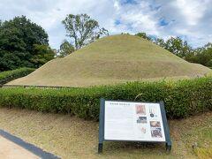 そんなこんなでなんとか到着!「高松塚古墳」です。  え?これ?と思われる方も結構いると思いますが、こちらが紛れもなく高松塚古墳です(笑)小さなお山がぽこっとある程度ですが立派な古墳です。  7世紀末から8世紀初めにかけて作られた直径23m、高さ5mの円墳です。被葬者は特定されていないというのがまたロマンですね~!