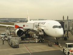 JAL909便 羽田10:15発 那覇13:05着 なんだか久しぶりの飛行機でうれしい!  席は半分くらいしか埋まっていませんでした。 あれ!ホテルはほぼ満室だったのに! しかし、この後の石垣便、宮古便、羽田便は満席でした。