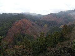 その後世界遺産の吉水神社にも寄って世界最古の書院建築を拝観してきました。 吉水神社の境内からは中千本・上千本が眺望できます。 桜の季節は吉野山全体を覆う桜を見ることができるそうです。 紅葉には少し早かったですが、少しずつ木々が色づいていました。