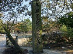 奈良では先ず東大寺を訪れました。