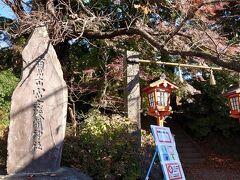 新倉富士浅間神社と有名な公園へ 階段が、階段が、階段が長~~いらしい