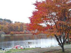 国立公園で紅葉が見事でした!