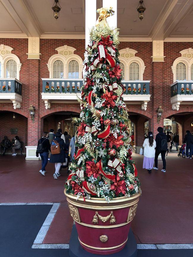 ディズニーランド クリスマス 2020