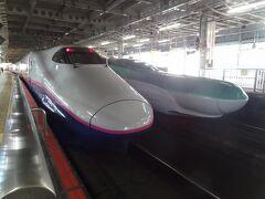 仙台駅に並ぶ東北新幹線E2系とE5系(右)。  私が乗るのは、左の'やまびこ124号.東京行'です。 平成9年にデビューした、JR東日本の新幹線車両では最古参のE2系新幹線電車。 営業最高速度は275km/hなんだそうです。