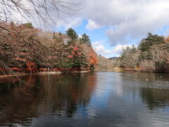 【雲場池】 紅葉の名所と聞いて来ましたがもう終わり掛けでした