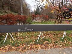 久しぶりの軽井沢へ家族旅行で行ってきました まずは、ずっと行ってみたかった【ハルニレテラス】へ