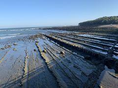 油津から40分くらい日南海岸を北上して宮崎県の定番スポットの青島神社に。 青島をとりまく波状岩の「鬼の洗濯板」。