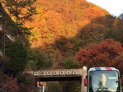 本日のお宿、横谷温泉仙狭亭。 標高が高いためか、周辺は色づいていました。