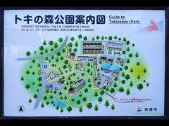 12:55 トキの森公園 観光客としてはじっくりとトキの姿を見ないと帰れませんよね(笑)