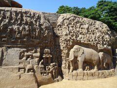 アルジュナの苦行という名前がついた巨大石像レリーフです!  個人的にはマハーバリプラムの石造物で一番よかった。