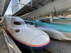 東京駅からMaxとき305号に乗車です。予約時には指定席の2階席は満席だったので1階席を予約。
