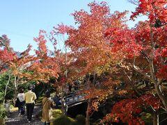 強羅公園を出て、隣接する箱根美術館へ。 美術館の入口付近。