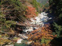 """★祖谷のかずら橋★ ちなみに誰が名付けたか祖谷は""""日本三大秘境""""に数えられています 観光バスや行楽客でごった返ししており、秘境感は全く感じられませんでした(>_<)  あとの二個所は・・ 「宮崎県の椎葉村」「岐阜県の白川郷」です。"""