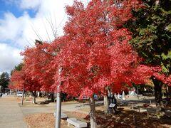 まず米沢城趾のある松が岬公園へ。