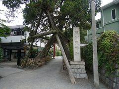 ともちゃんたちと別れ、もう少し鎌倉を散策します。近くの荏柄天神社へ