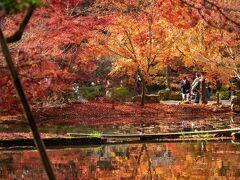 逆さ紅葉で知られる日本紅葉の名所100選の公園のようです