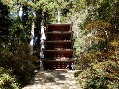 「灌頂堂」の先にある石段を見上げると「五重塔」が!