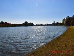 そばを戴きながら小合溜を眺める・・・大きな川みたいな池だ。